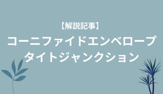 【皮膚バリアに超重要】コーニファイドエンベロープ・タイトジャンクションについて解説