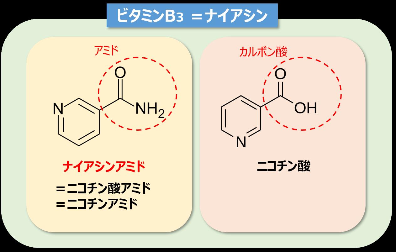 アミド は ナイアシン と ナイアシン(ビタミンB3)とは?エビデンスをもとに効果や副作用を解説